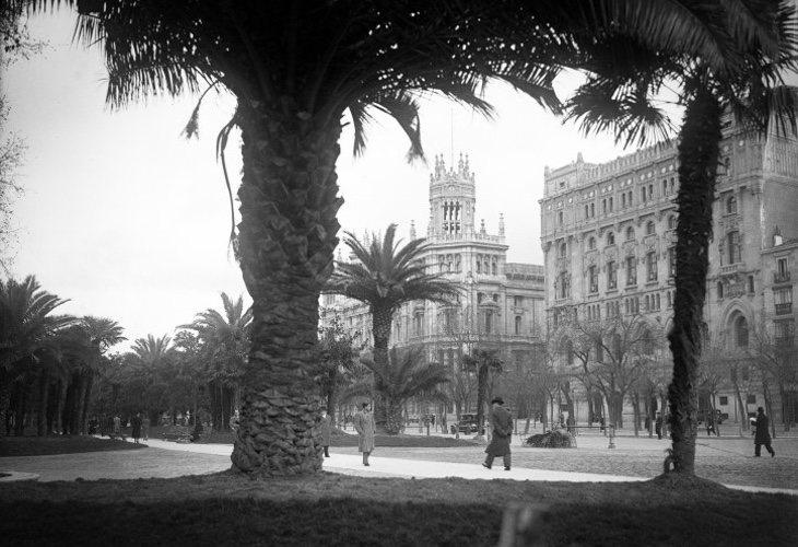Paseo del Prado engalanado con palmeras