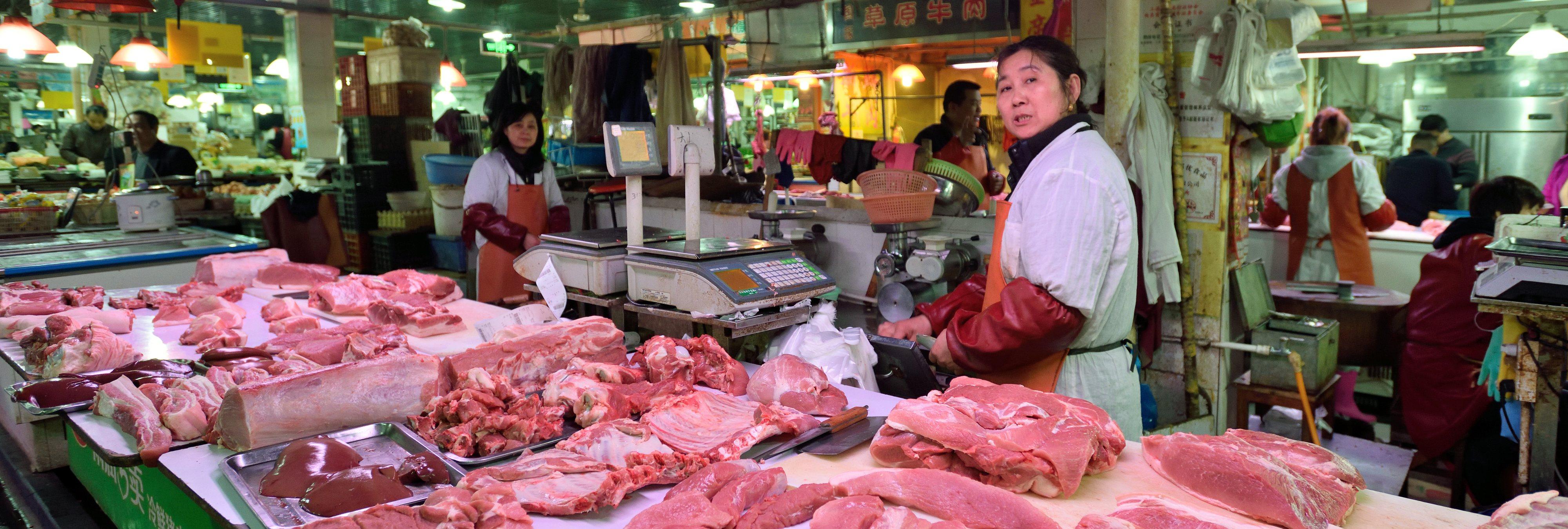 China cría cerdos gigantes con forma de oso polar para cubrir sus necesidades de carne