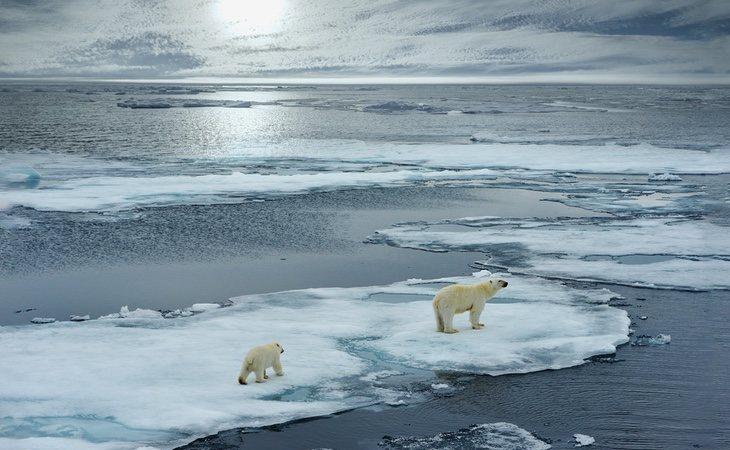 Abascal asegura que las leyes contra el cambio climático unen a multinacionales, poderosos y extrema izquierda para quitar libertades