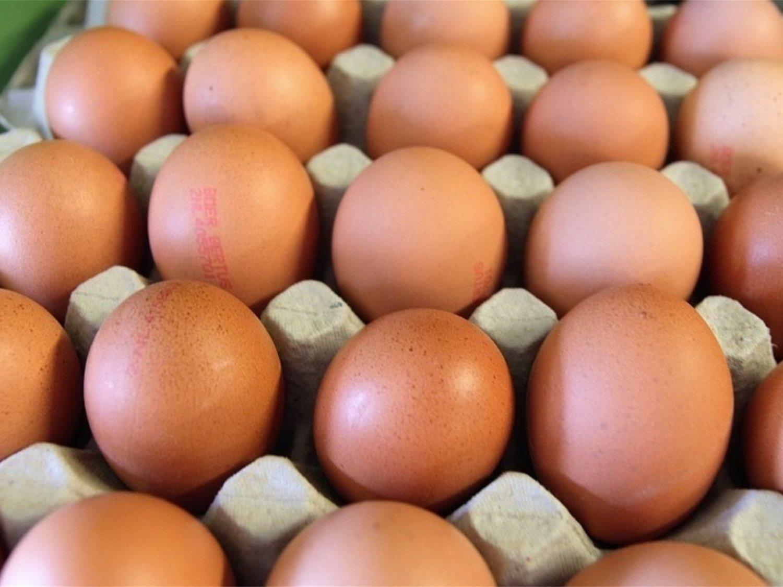 Cliente de Mercadona encuentra un huevo con sangre y el gerente dice que es de gallina virgen