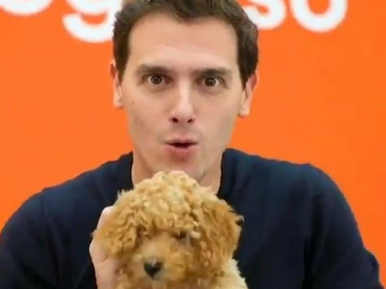 Albert Rivera desata una ola de memes al mostrar a su perro Lucas