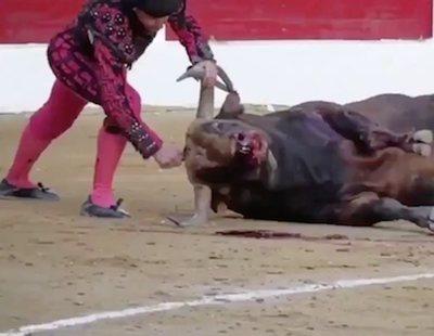 La crueldad de las corridas de toros: Un torero apuñala brutalmente a un toro en la cabeza