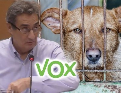 "VOX plantea matar perros sin adopción en Zaragoza ""sin raza reconocible, viejos o enfermos"""