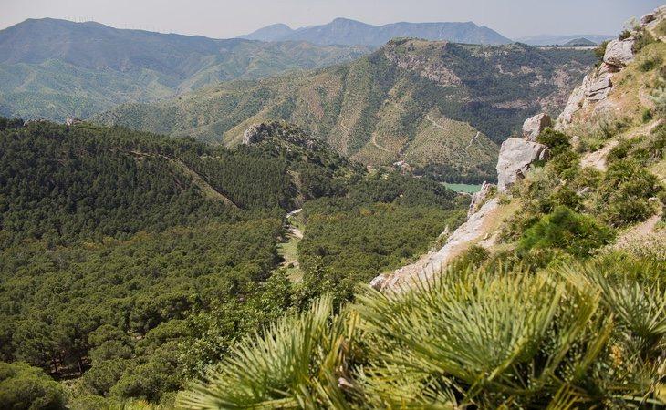 Bloomberg destaca la belleza del campo andaluz y las bondades de ciudades como Málaga o Sevilla