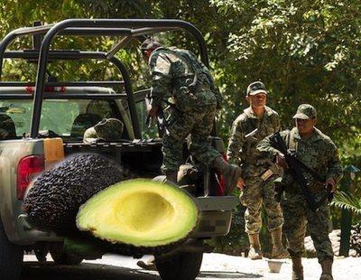Los cárteles mexicanos de la droga, en guerra por el mercado del aguacate