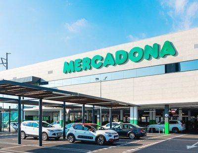 Sueldo de 1.500 euros con catorce pagas: Mercadona ofrece estos nuevos puestos de trabajo
