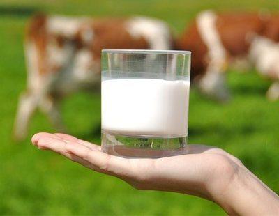 Quién fabrica la leche de marca blanca de Mercadona, Carrefour, Lidl, Dia y Alcampo