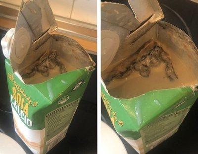 Encuentra una colonia de hongos en su bebida de Mercadona tras notar un sabor extraño