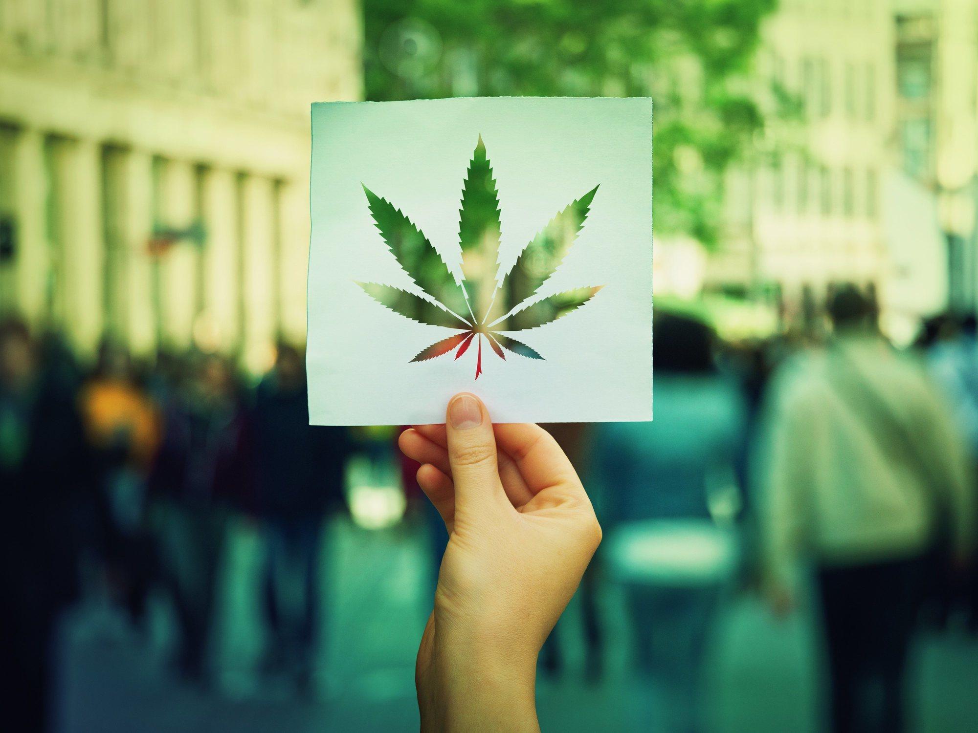 ¿Llega la legalización de la marihuana a España? Sus defensores se muestran esperanzados