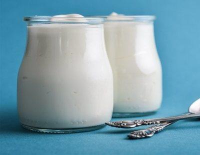 Quién fabrica los yogures de marca blanca de Mercadona, Carrefour, Lidl, Dia y Alcampo