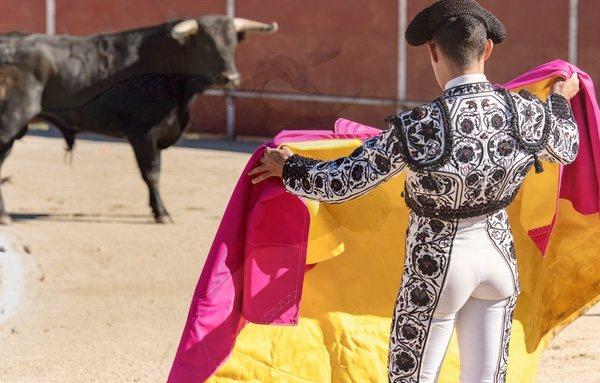 En Panamá se prohíbe expresamente la celebración de corridas de toros desd el año 2011