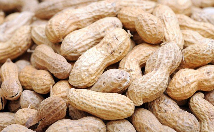 Los cacahuetes pertenecen a la familia de las leguminosas y más concretamente a la de los guisantes