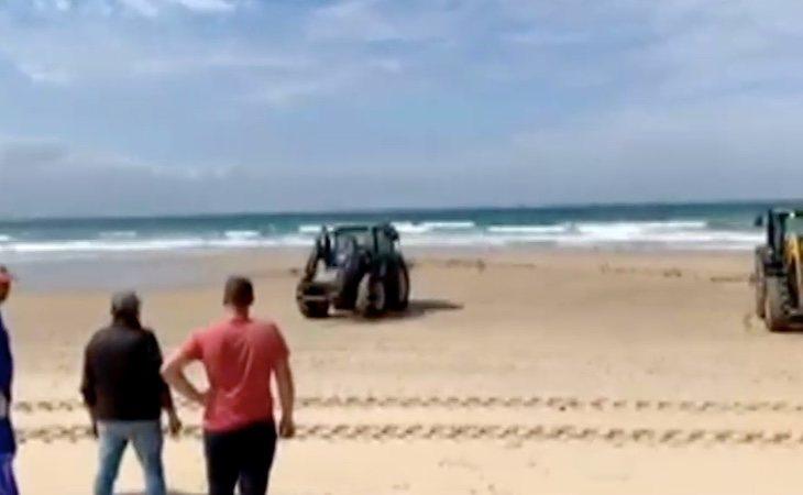La esterilización de la playa con lejía puede destruir todo el ecosistema de la zona