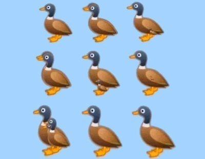 Duck Challenge: ¿Cuántos patos ves en la imagen? El reto viral que sacude las redes