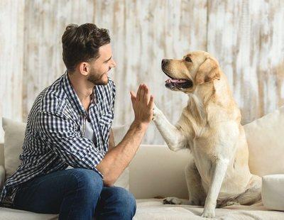 ¿Qué edad tiene mi perro en años humanos? Hallan una nueva fórmula mejor que multiplicar por siete