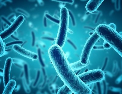 Un accidente en un laboratorio lleva a descubrir una rara bacteria que come metales