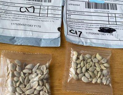 Ciudadanos de EEUU reciben sospechosos paquetes de semillas desde China sin haberlas pedido
