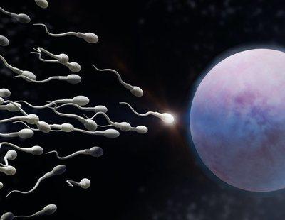 Fin a una creencia de 300 años: descubren que los espermatozoides no nadan como creíamos