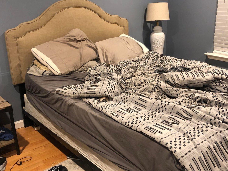 El reto viral que sacude la red: ¿Puedes encontrar al perro escondido en este dormitorio?