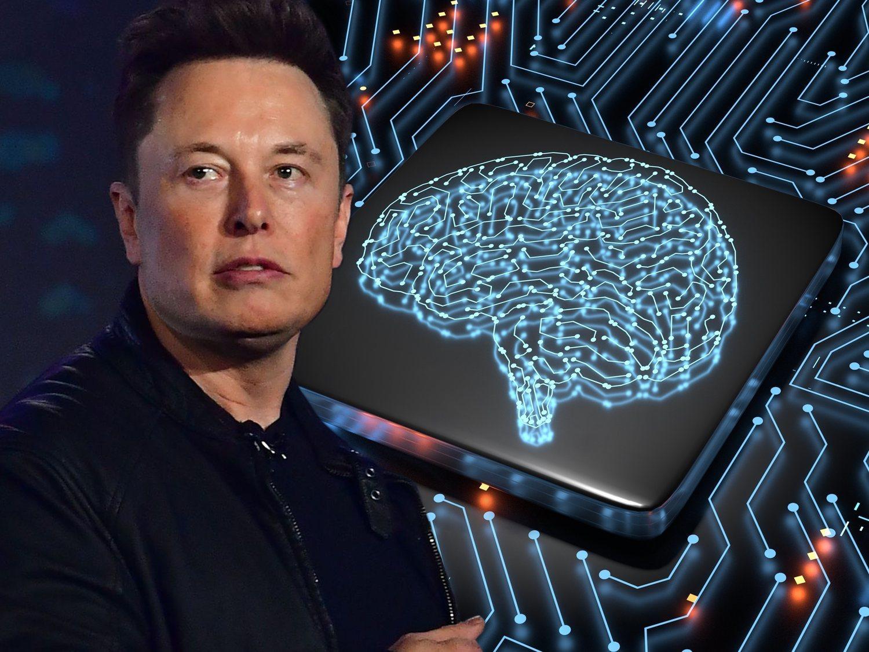 """Elon Musk inserta un implante cerebral en un cerdo: """"Será como un Fitbit pero dentro de tu cráneo"""""""