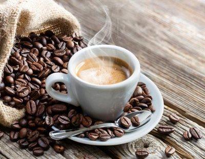 Quién fabrica el café de marca blanca de Mercadona, Carrefour, Lidl, Dia, Alcampo y Aldi