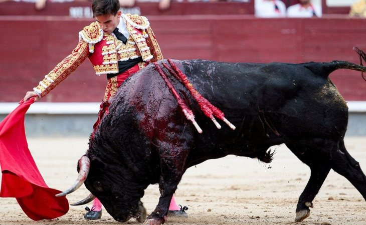 Europa vota en contra de las subvenciones a los toros