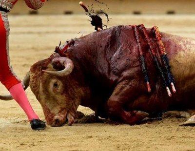 El Parlamento Europeo rechaza los toros: veta las subvenciones públicas que otorga España