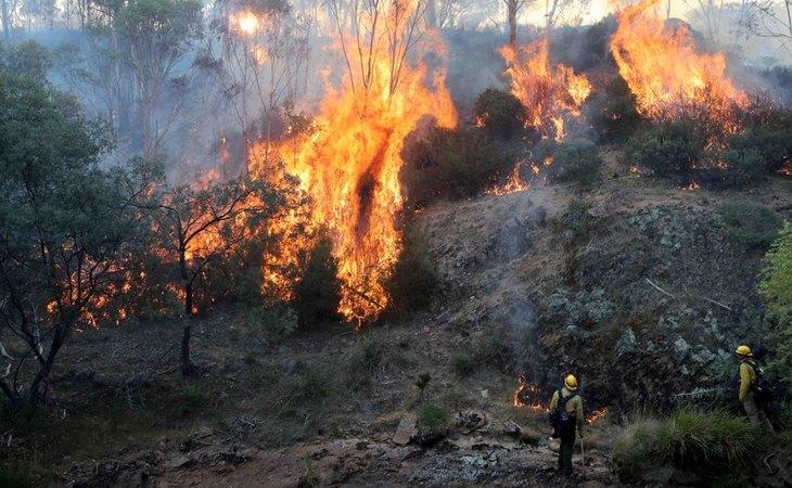 Los incendios de Australia provocaron una catástrofe medioambiental