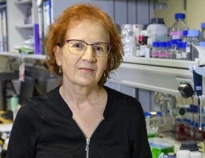 """Margarita del Val: """"Los vacunados serán asintomáticos, pero potencialmente contagiosos"""""""