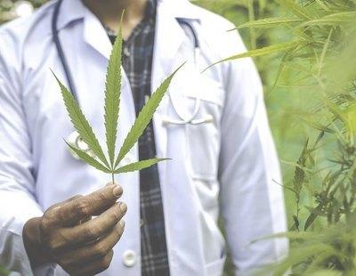 Las farmacias de Portugal empiezan a vender flores de cannabis con THC
