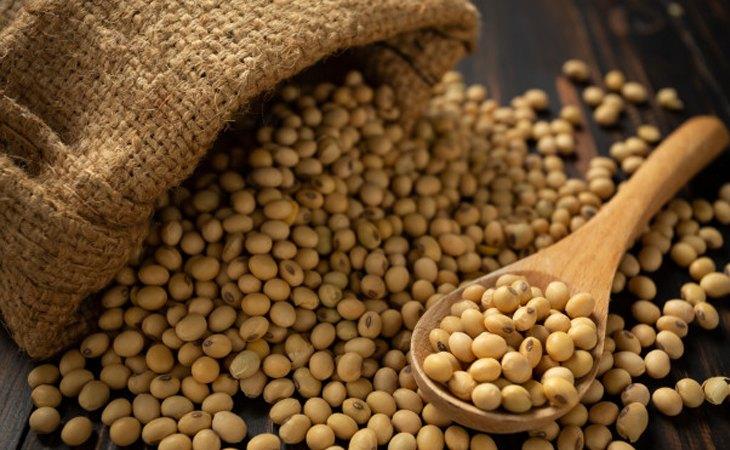 Se ha detectado la presencia de soja no etiquetada en el producto