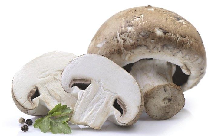 El consumo de champiñones tiene grandes beneficios para la salud