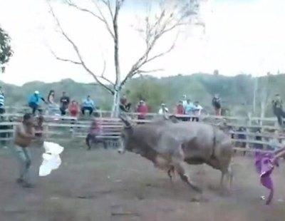 Muere corneado tras lidiar un toro con su camiseta en una corrida ilegal difundida en las redes