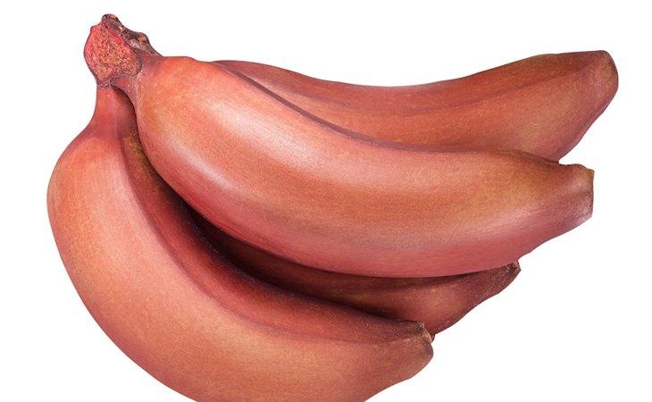 El plátano rojo llegará pronto a la península