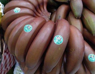 Llega a la península el plátano rojo con sabor a frambuesa que se cultiva en Canarias