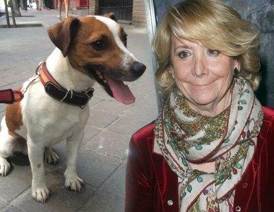 Esperanza Aguirre revela el terrible final de su perro Pecas