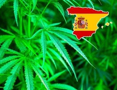 El mapa de la marihuana en España: el ranking de comunidades que más porros consumen