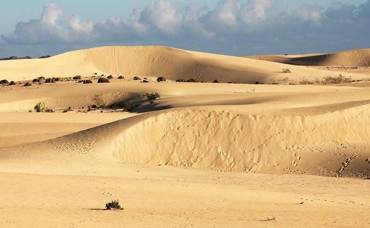 Parque Natural de las Dunas de Corralejo (Fuerteventura)