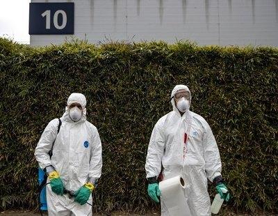 """Advierten del riesgo de un brote del mortífero Virus del Nilo este verano en España: """"Vamos tarde"""""""