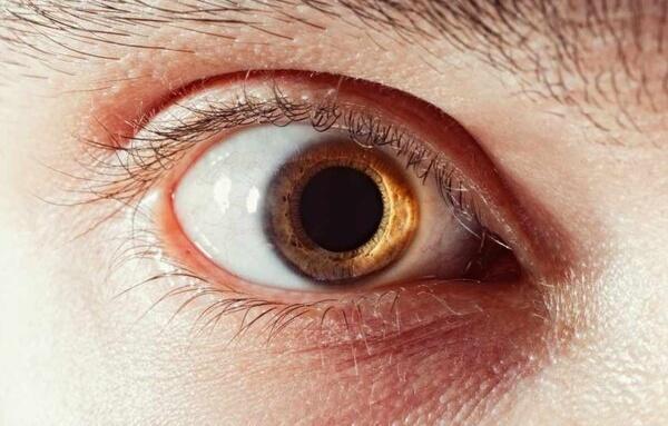 El tamaño de tu pupila determina tu inteligencia, según un estudio