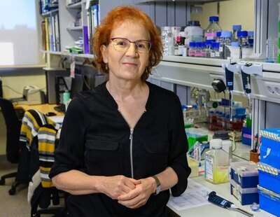 """Margarita del Val: """"Hemos aprendido a no confiarnos, este virus puede atacar de nuevo"""""""