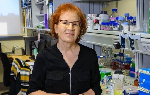 """Margarita del Val: """"No hay que tener miedo a la vacuna, sino a la Covid-19"""""""