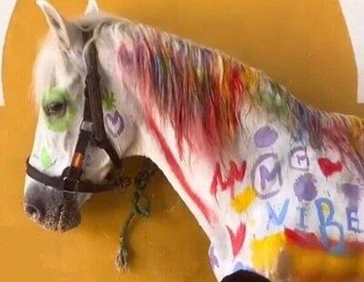 Indignación por una actividad infantil en un curso de verano: pintar un caballo