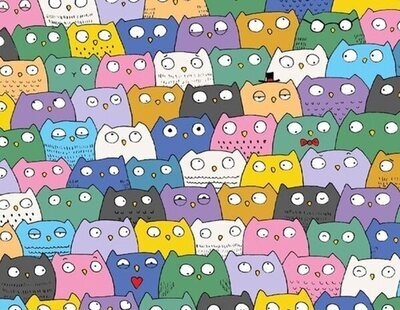 El reto viral que sacude las redes: ¿Ves al gato entre los búhos? Solo tienes 10 segundos