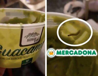 Compra un paquete de Guacamole de Mercadona y encuentra un gusano arrastrándose por su interior