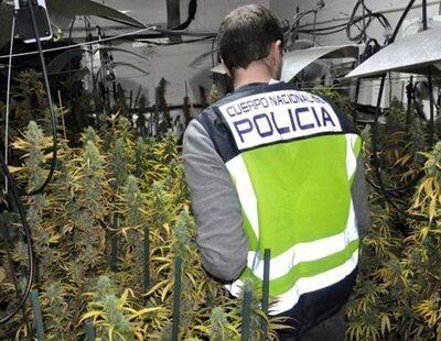 Detenido un sexto policía nacional destinado en los coches patrulla dentro de la operación antidroga de Mérida