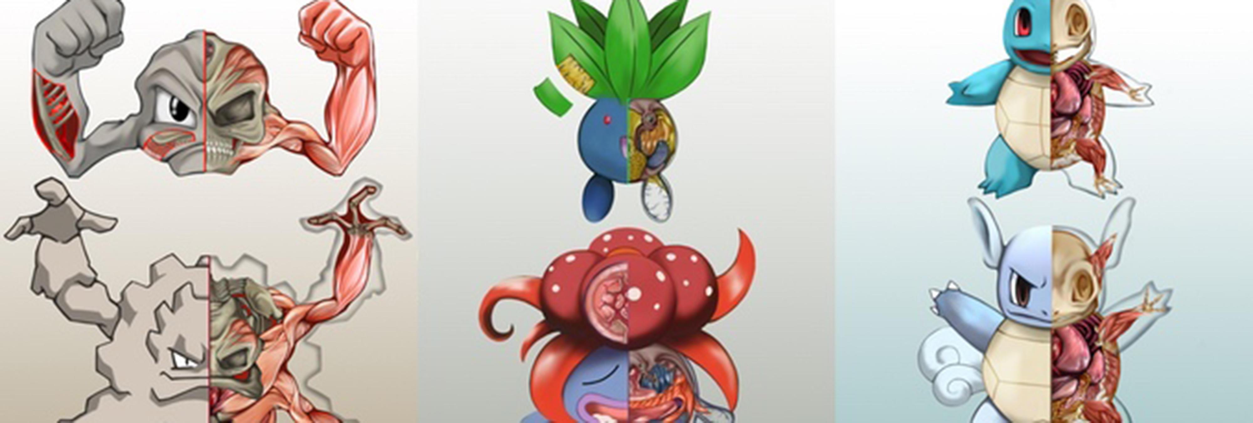 La \'PokéNatomy\', una guía anatómica de todos los Pokémon originales ...
