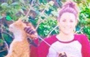 Prohíben ejercer a una veterinaria después de matar al gato de su vecina con una flecha