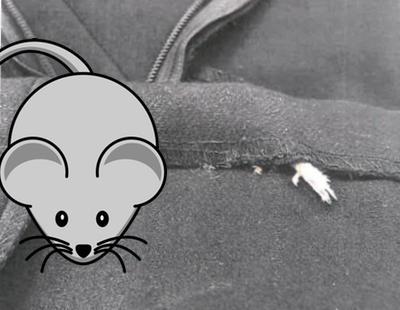 Una mujer encuentra un ratón muerto dentro del forro de un vestido de Zara