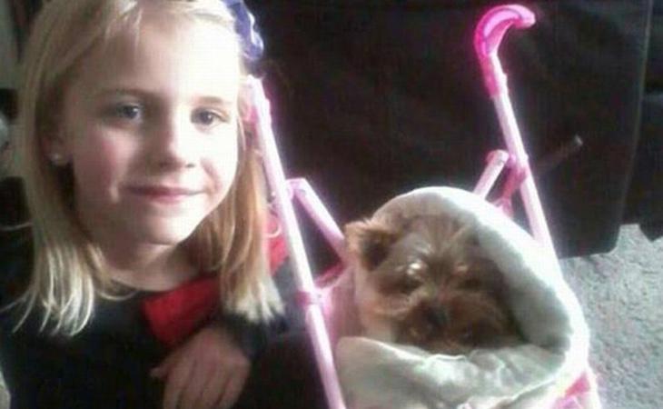 Chewy llevaba seis años en la familia de Haley